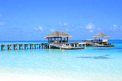 Jetty in Maldives Royalty Free Stock Images