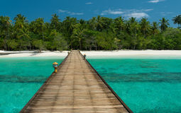 Jetty nieporuszona plaża zdjęcia stock