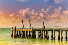Jetty over seacoast skyline sunset tone royalty free stock images