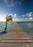 Jetty ower ocean Royalty Free Stock Photos