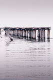 Jetty at the sea Royalty Free Stock Photography
