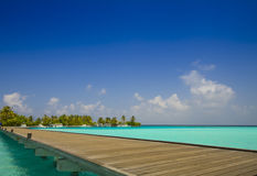 Jetty to tropical island. With palm trees and blue sky; Maldives Stock Images