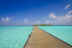 Jetty to tropical island. With palm trees and blue sly; Maldives Stock Image