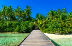 Jetty to tropical island. Jetty to untouched island on the maldives Royalty Free Stock Photography