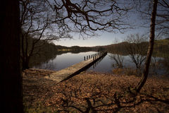 Jetty through woods Royalty Free Stock Image