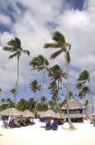 Jetzt setzen die Sammelhotelgäste Larimar, die beim Bavaro genießen, in Punta Cana, Dominikanische Republik auf den Strand Lizenzfreie Stockfotografie