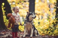 Jeu actif de fille avec le chien dans le repos de for?t d'automne et l'activit? actifs d'enfant sur l'air frais ext?rieur images stock