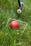 Jeu, bâton et boule de cricket Photos libres de droits