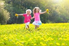 Jeu d'enfants Enfant dans le domaine de pissenlit Fleur d'été Image stock