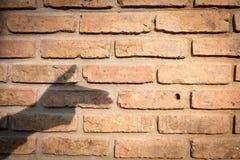 Jeu d'ombre de silhouette de main comme arme à feu sur la vieille texture de mur de briques fond de concept de violence pour la c Photos libres de droits