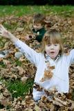 Jeu dans les lames d'automne Image stock