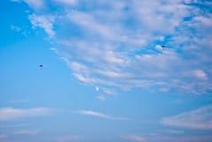 jeu de cerfs-volants Images stock