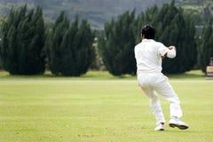 Jeu de cricket Image stock