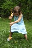 Jeu de croquet Photos libres de droits