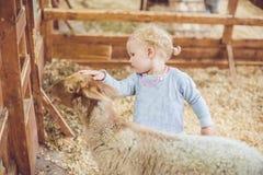 Jeu de fille avec l'agneau à la ferme Photographie stock