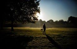 Jeu de fille avec son chien dans l'allée de parc Photo libre de droits
