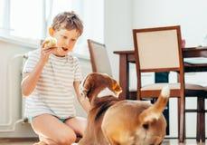 Jeu de garçon et de chien ainsi que la balle de tennis Image stock