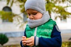 Jeu de petit garçon avec des châtaignes dans le jour d'automne Photographie stock libre de droits