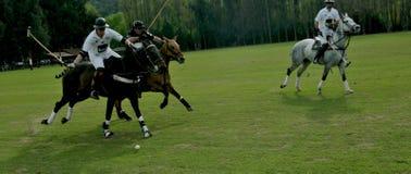 Jeu de polo Photographie stock libre de droits