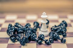 Jeu de société d'échecs pour les idées et la concurrence et la stratégie, Bu d'échecs Photo libre de droits