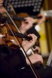 Jeu du violon Image stock