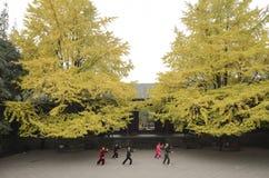 Jeu Taiji de personnes dans un temple Photographie stock