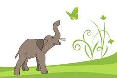 Jeune éléphant Photos stock