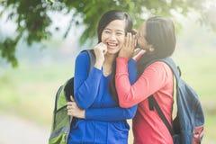 Jeune étudiant asiatique wishpering quelque chose à son ami, souriant Photo libre de droits