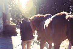 Jeune adolescente équestre menant son cheval brun dans le rayon de soleil photos stock
