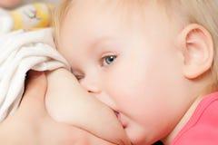 Jeune allaitement de fille d'enfant en bas âge photo stock