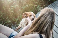 Jeune animal familier de chien son de Bretagne d'épagneul femelle et Amitié et lo Photo stock