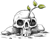Jeune arbre de crâne Images stock