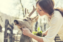 Jeune belle femme étreignant les cerfs communs d'OEUFS DE POISSON animaux au soleil Images stock