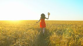 Jeune belle femme hispanique de voyageur heureux courant sur le champ de blé en été de coucher du soleil Tourisme de bonheur de s clips vidéos