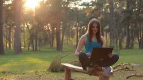 Jeune belle femme parlant et travaillant utilisant l'ordinateur portable dans le coucher du soleil banque de vidéos