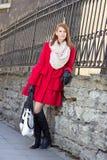 Jeune belle femme posant près de la barrière de metall Photos stock