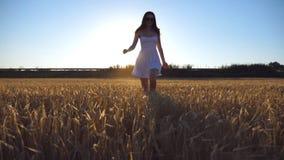 Jeune belle fille courant le long du champ de blé avec la fusée du soleil au fond Femme caucasienne pulsant à l'appareil-photo banque de vidéos