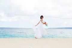 Jeune belle jeune mariée de femme dans la robe de mariage Image libre de droits
