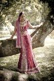 Jeune belle jeune mariée indoue indienne se tenant sous l'arbre Photos libres de droits