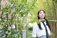 Jeune belle jeunesse adorable mignonne heureuse chinoise asiatique d'étudiant dans un jardin de parc extérieur en été images stock