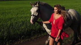 Jeune belle promenade d'avance de femme avec un cheval blanc sur le champ vert banque de vidéos