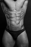 Jeune bodybuilder image libre de droits