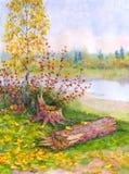 Jeune bouleau d'automne près d'un arbre tombé Photographie stock libre de droits