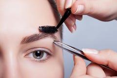 Jeune brune avec le maquillage de femme de cheveux courts cosmétique de fille Photos stock