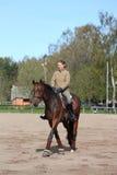 Jeune cheval de baie blond d'équitation de femme Photographie stock