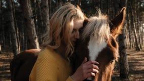 Jeune dame avec de beaux cheveux bouclés strocking doucement le cheval tout en l'étreignant sur le pré du mouvement lent du bois banque de vidéos