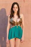 Jeune dame dans la robe sexy photographie stock libre de droits