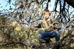 Jeune dissimulation de chasseur Photographie stock libre de droits