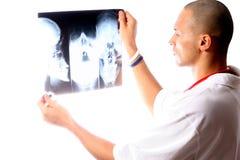 Jeune docteur Photographie stock