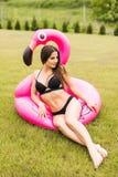 Jeune et sexy fille ayant l'amusement et riant et ayant l'amusement sur l'herbe près de la piscine sur un flamant rose gonflable  Image libre de droits